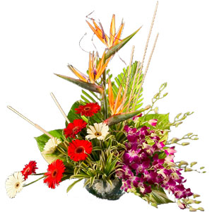 Magical Passionate Moments Mixed Flowers Arrangement