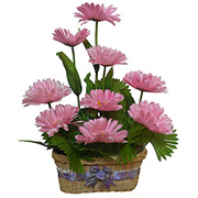 Ultimate Fantasy Long Lasting Gerbera Arrangement