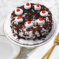 All-Time Favorite Black Forest Cake from Taj or 5 Star Hotel Bakery