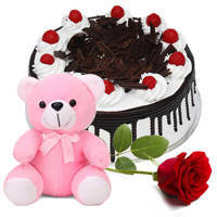 Rich Black Forest Cake with Single Rose N Teddy