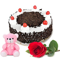 Perfect Birthday Combo of Black Forest Cake with Rose and Teddy