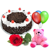Anniversary Gift of Fresh Picked Single Rose with Black Forest Cake, Teddy and Balloons