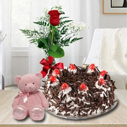 Extraordinary Black Forest Cake with Single Red Rose and a Small Teddy Bear