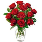 Dazzling Red Roses in a Vase