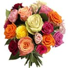 Classic 24 Colorful Mixed Roses