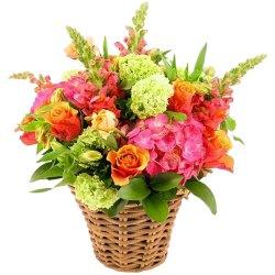 Lovely Basket Arrangement of Delicate Flowers