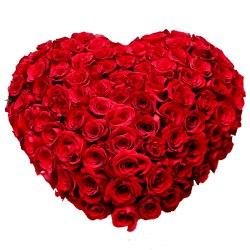 Magical Heart Shaped 150 Dutch Red Roses Arrangement