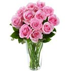 Bright Pink Roses in Vase