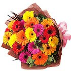 Delicate Mixed Gerberas Bouquet<br>