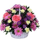 Pretty Basket of Carnations and Roses