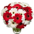 Lovely Arrangement of Gerberas in Glass Vase