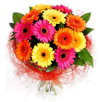 Delicate Bouquet of One Doz Mixed Gerberas