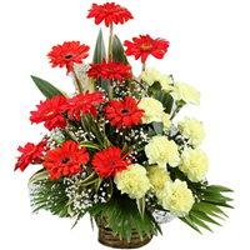 Fantastic Yellow Carnations & Red Gerberas Basket