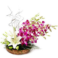 Blushing Basket of Orchids N Lilies