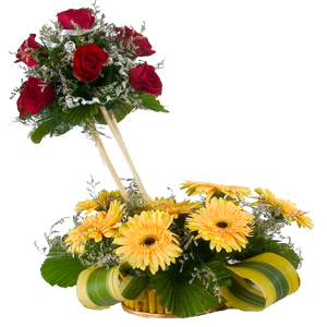 Pretty 8 Gerberas and 7 Roses in Designer Arrangement